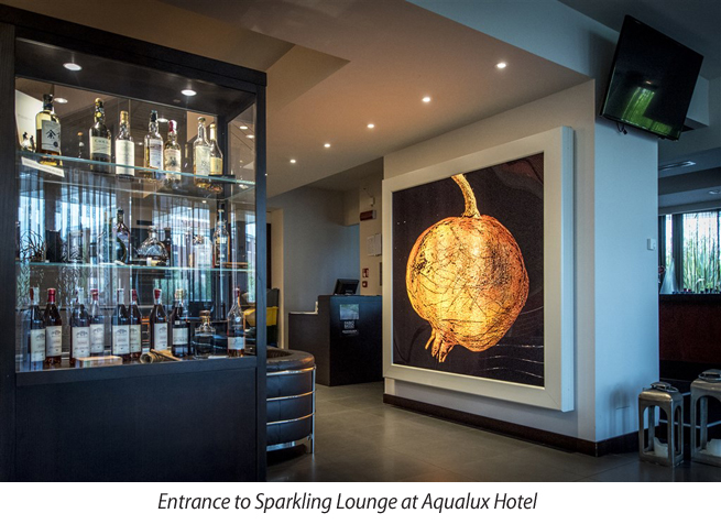 Aqualux Hotel, Garda Lake, Bardolino, Italy, Honeymoon in Italy, Perfect wedding Travels, Perfect Wedding Blog, Honeymoon Destinations, Fish&Chef Festival, Sparkling Lounge