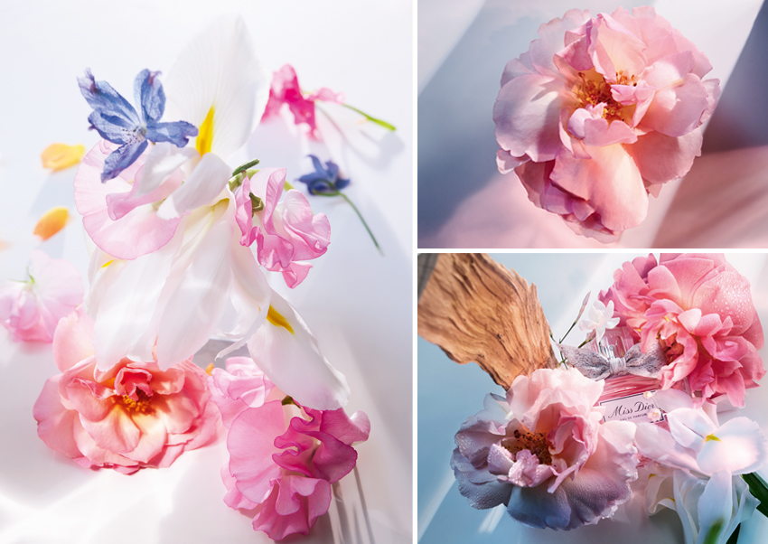 Sweet Love Rose, Peony and Iris are the floral bouquet in the new Miss Dior Eau de Parfum developed by François Demachy, Dior Perfumer
